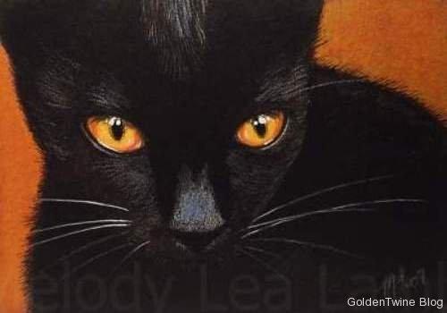 Black Cat Two